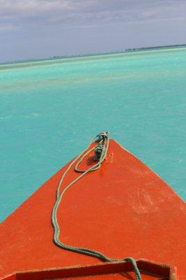 Christmas Island Blue