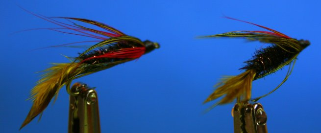 Lake Bait (Wet rear view of red barbs visibility top/bottom)
