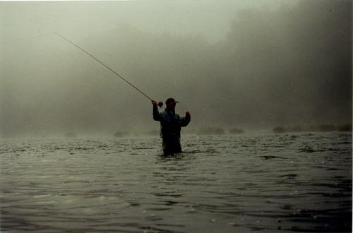 Umpqua River for Steelhead