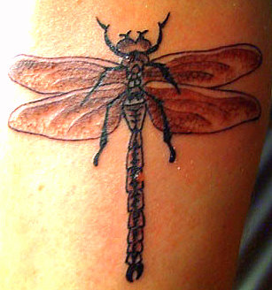 dragon tat a Fly tattoo the mythological role of flies related to its small size, persistence, uncleanness.