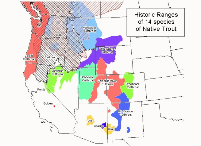 Western Trout's Historic Ranges