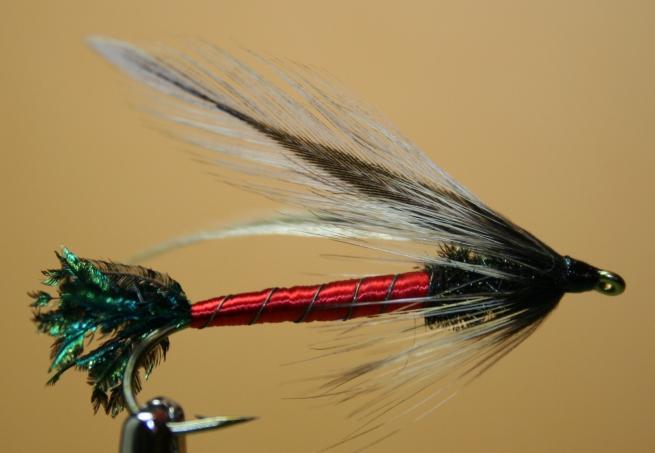 Spruce Fly~Tony Muncy