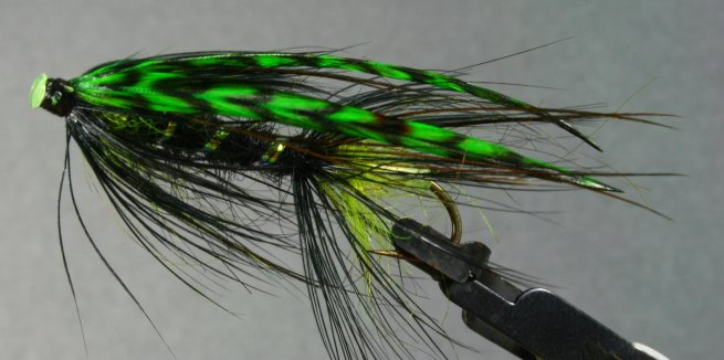 Green With Envy~McCrary