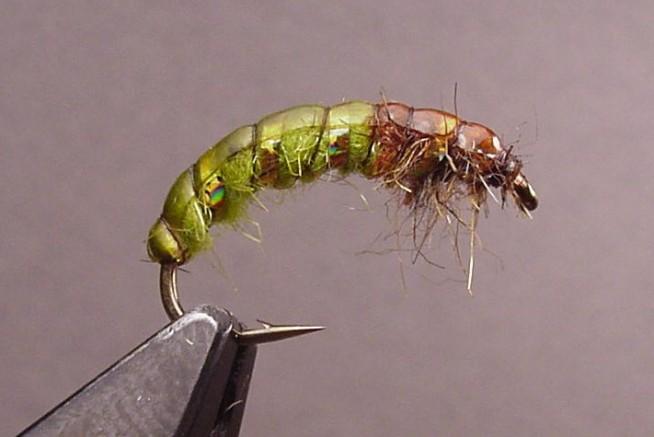 Green Czech Nymph