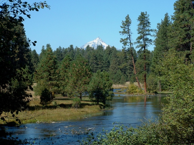 Metolius River Headwaters (Spring Fed)