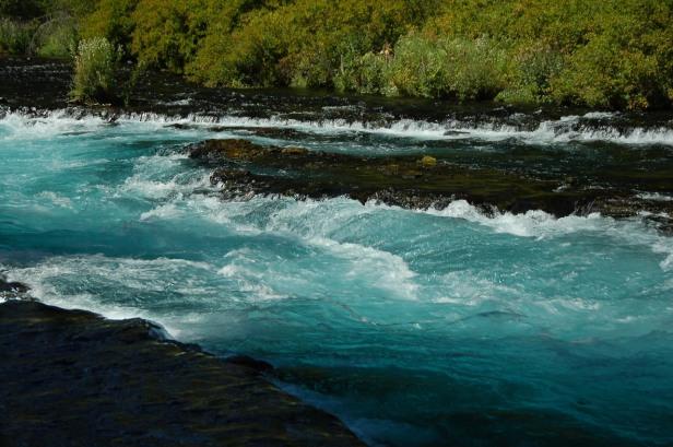 Metolius River (Above the Gorge)
