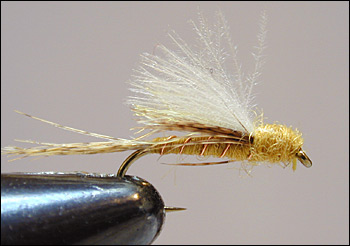 PMD Emerger