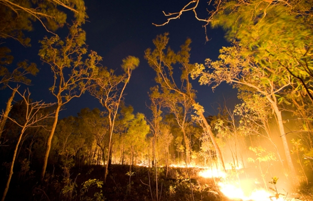 Brush Fire, Australia