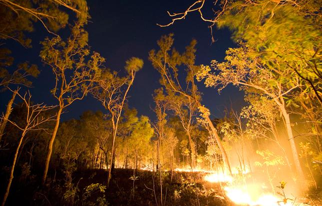 Brush Fire, Australia