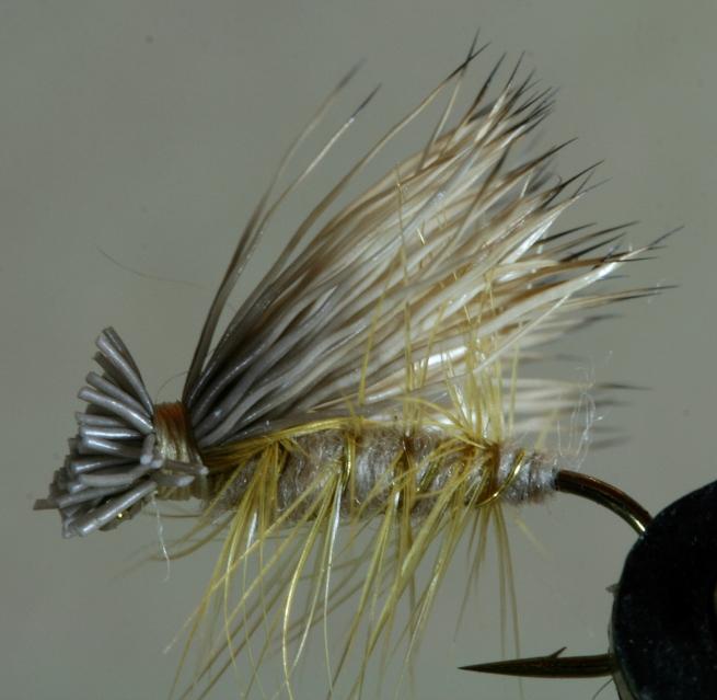 Elk Hair Caddis~G. Muncy