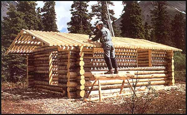 Proenneke Building Cabin
