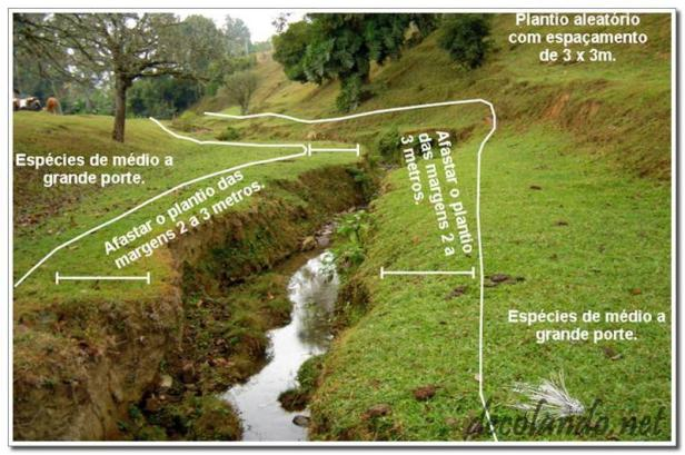 Small stream restoration