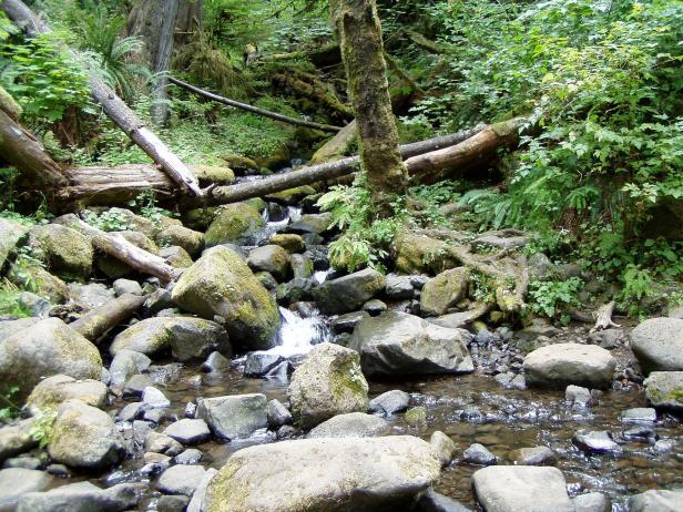Low Water Eagle Creek, Oregon