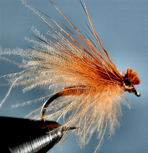 October Caddis Dry~Smokey Mtn. Fly Guide