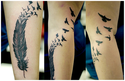 photography-tattoo-birds-feather-swittersb-corywest