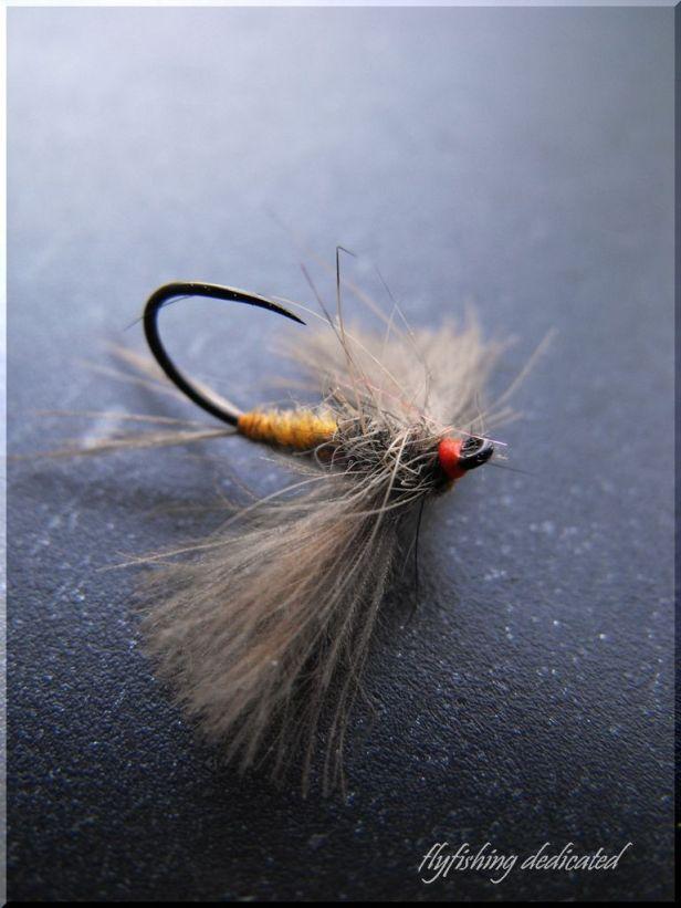 Dry Fly @ Zsolt Blogspot