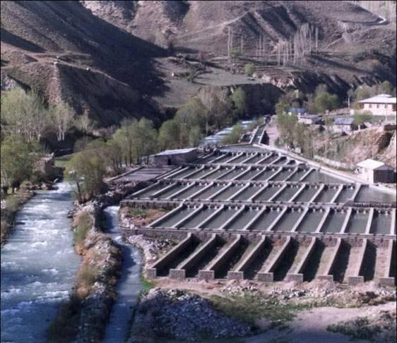 Iranian Aquaculture of Trout
