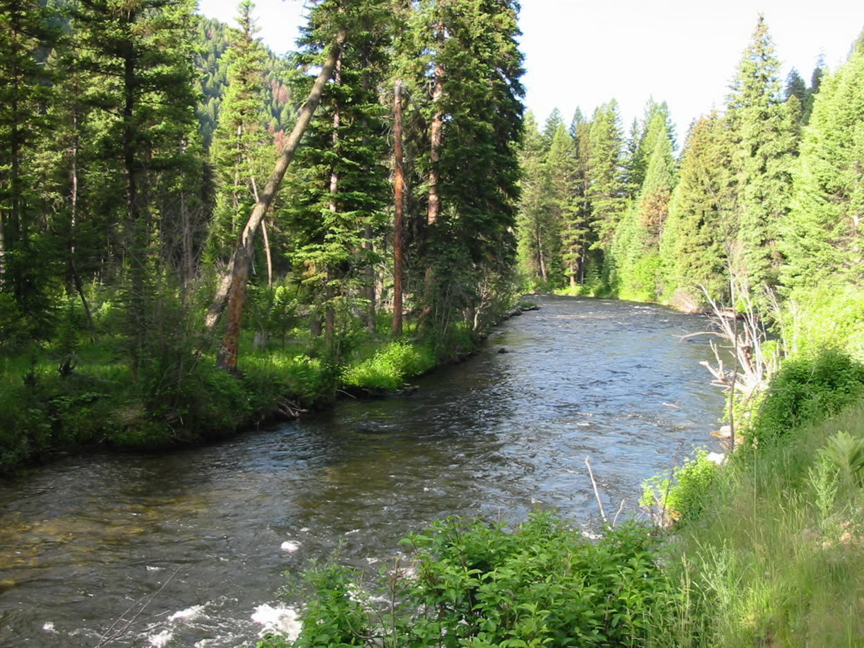 Top 7 fly fishing destinations for Best fly fishing in us