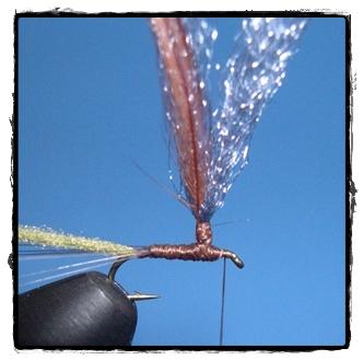 Traitor Midge Parachute by Anthony Naples