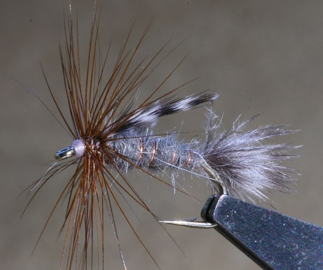 Timberline Emerger