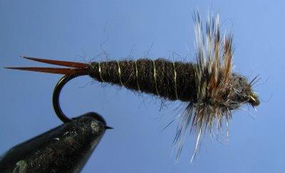 Brooks Stonefly~Central Alberta Flytying Club