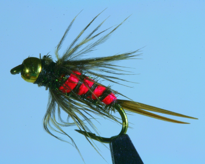 bloody mary fly