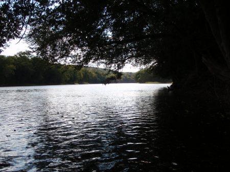 Susquehanna R. (http://stflyfisher.wordpress.com/)