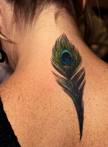 feathers tattoo. Feather Tattoo#39;s (Peacock In