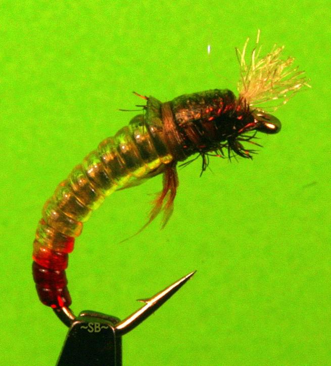 Fly Tying: Chironomid (Larva & Pupa) | SwittersB & Exploring