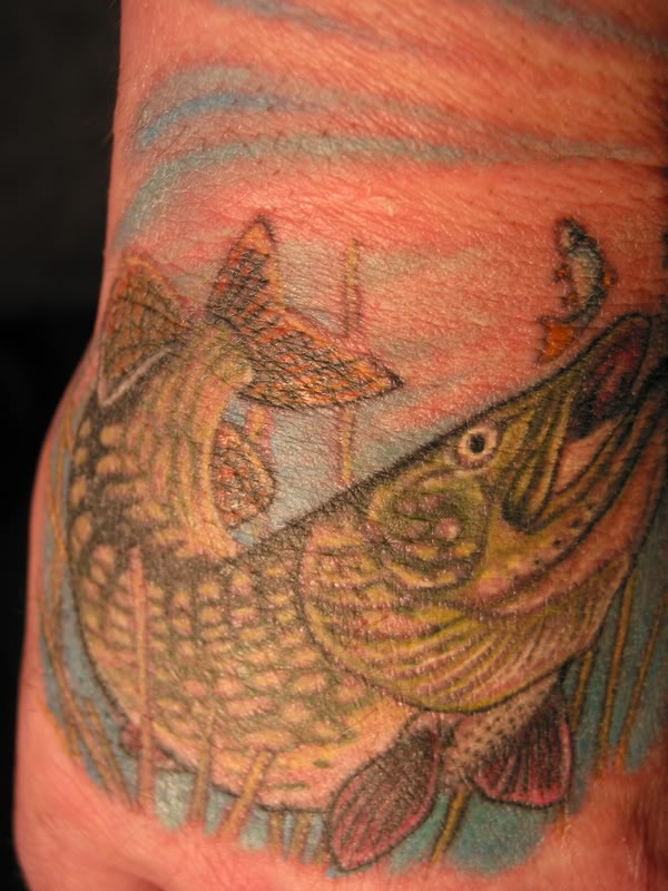 Tags: northern pike, pike, Pike fishing, Pike Fly Fishing, Pike Tattoo,