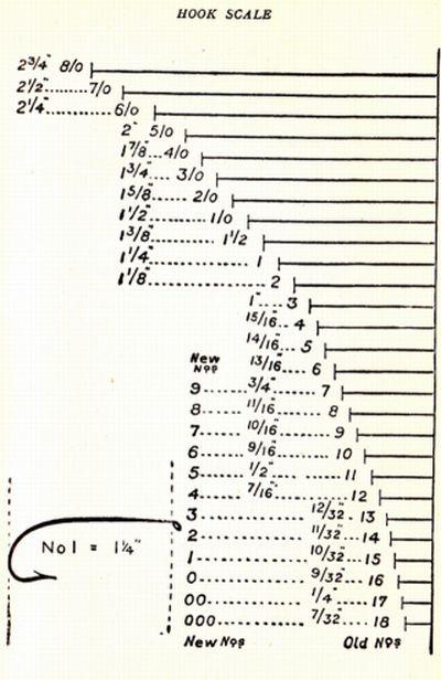 chart sizes:
