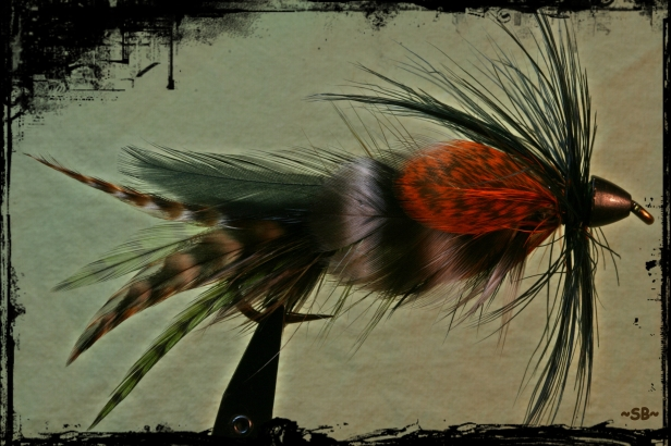 Hackle Barring and colors for mottled look? SB