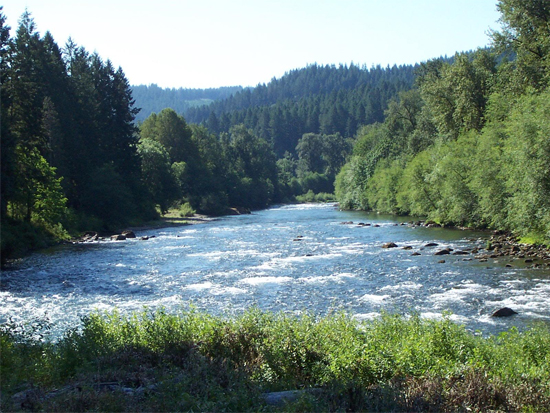 Mckenzie river oregon environmental assessment of flows for Fishing eugene oregon