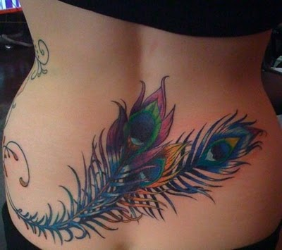 Peacock Feather Tattoo on Ribs Peacock Feather Tattoo Design