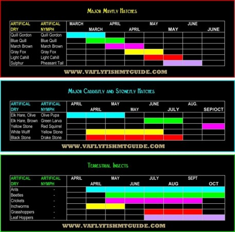 Fly fishing hatch charts you swittersb exploring for Fly fishing flies chart