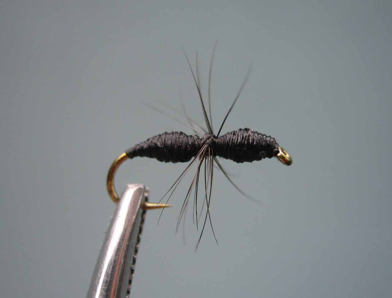 Fly tying terrestrials swittersb exploring for Fly fishing tying