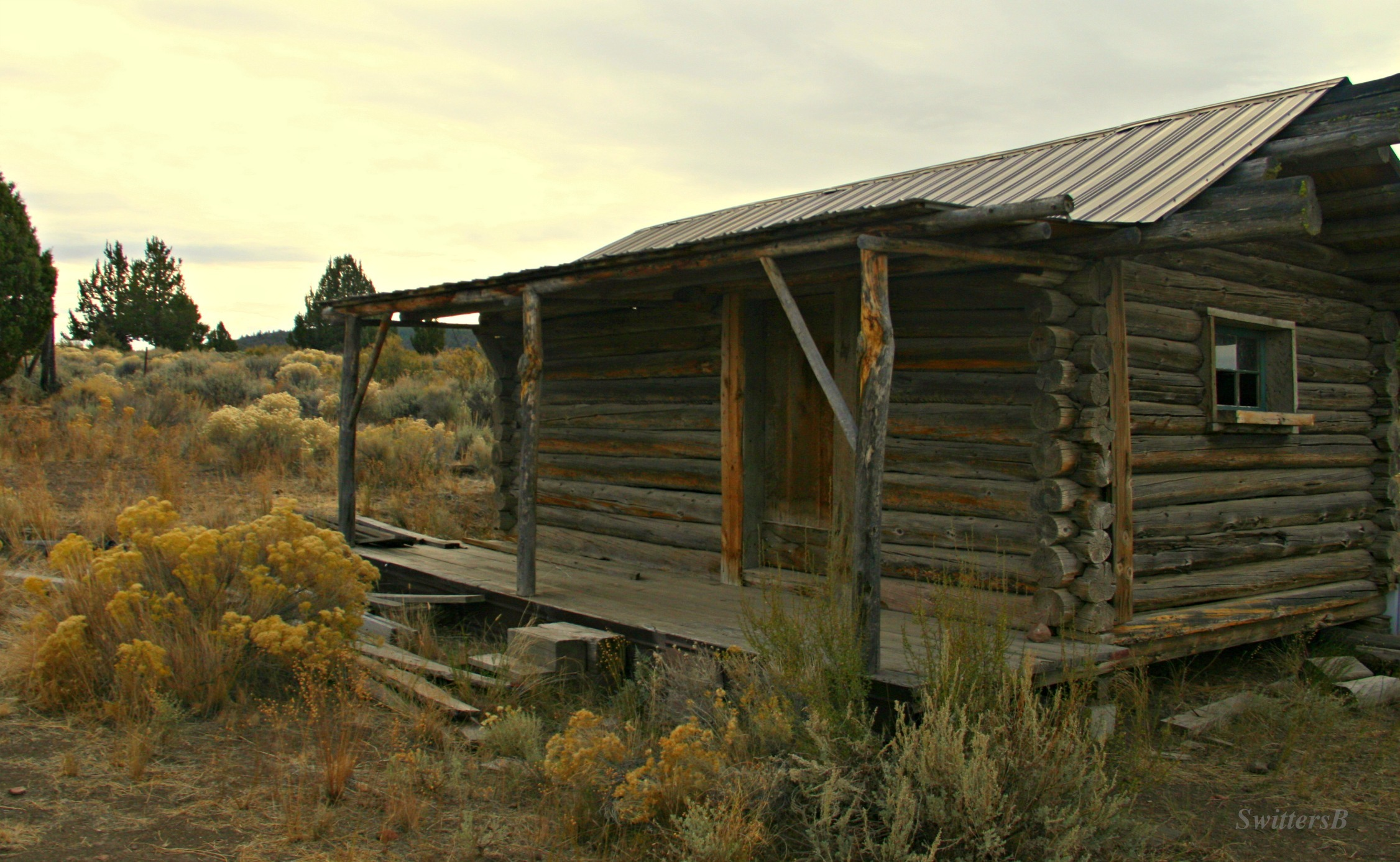 Marvelous photograph of Photography: Log Cabin & History Too SwittersB & Exploring with #9D9D2E color and 2252x1387 pixels
