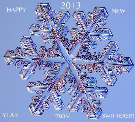 2013 NY SWITTERSB