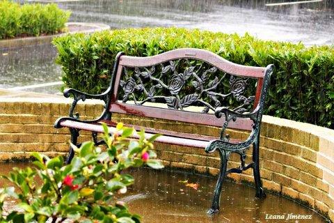 empty bench leana jimenez