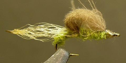 mayfly-emerger ian martin