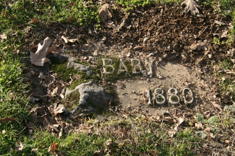 Baby 1880 Sb