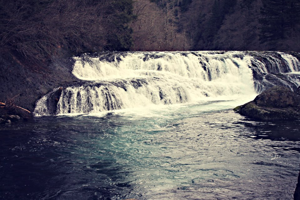 Natural barriers dougan falls and wild steelhead purity for Washougal river fishing