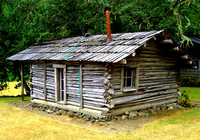 zane-grey-tiny-rustic-handmade-log-cabin-the-flying-tortoise
