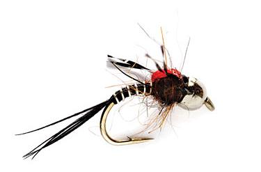 higas-sos-fly1