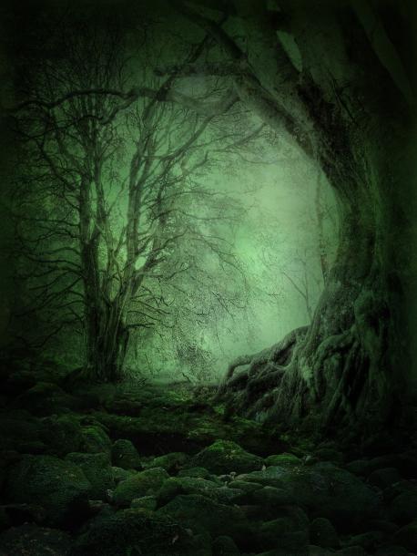 Mystery Woods Gods Kingdom