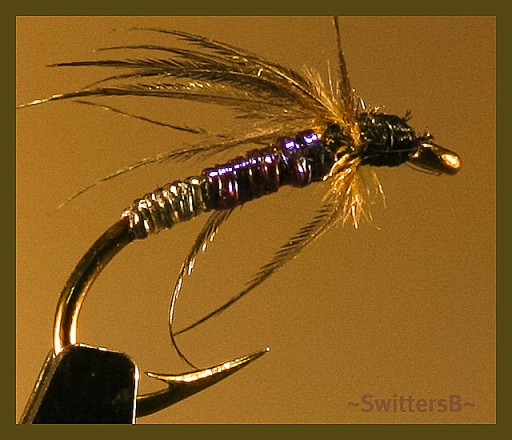Wet Fly Blue old Body SwittersB-3