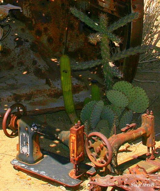 cactus sewing mach sb