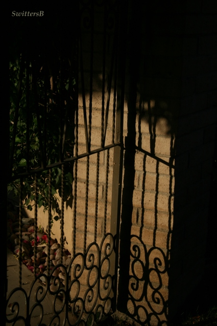 Gate Shadow SB