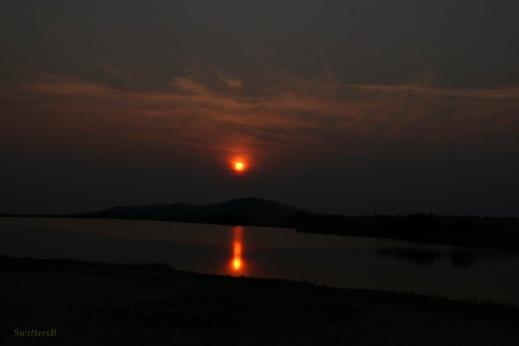 Early Sunrise SwittersB