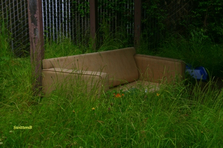 Greeen Couch 2